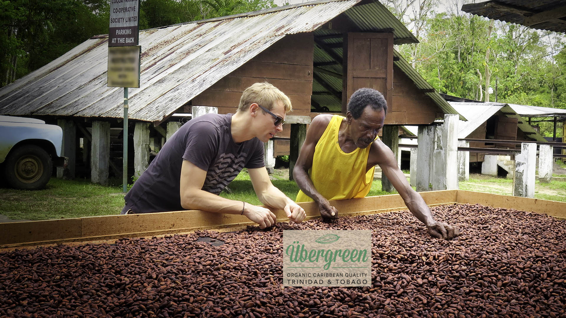 F/S – Organic Cocoa Beans from Trinidad