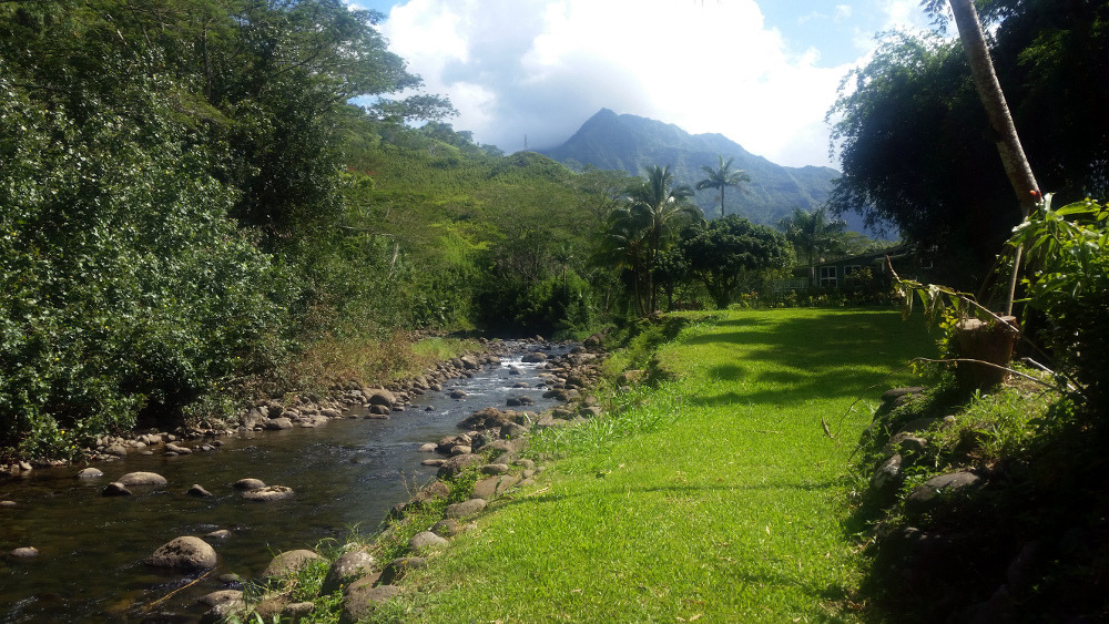 Cacao on Kauai: A Journey to the North Pole of Chocolate
