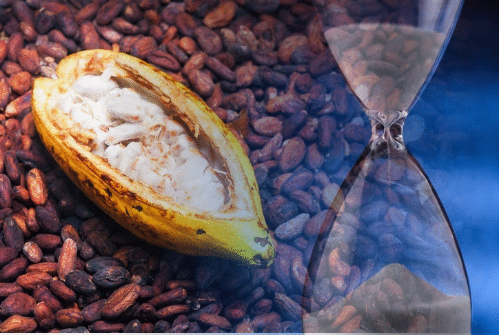 The world may not be running out of cocoa farmers after all