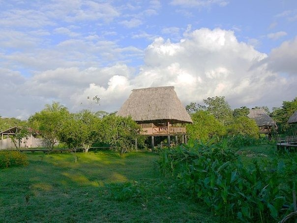 Return to Belize: Cocoa and Chocolate Eco-tour