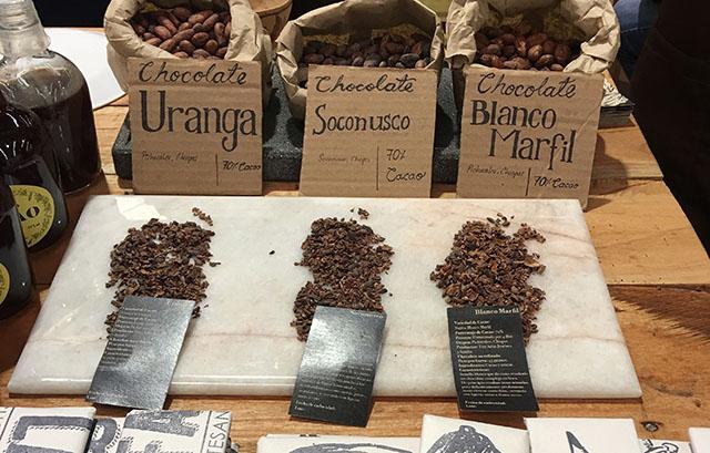 Living La Vida Cocoa in Mexico