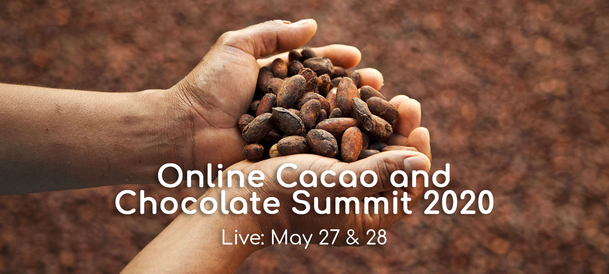 Cacao and Chocolate Summit 2020 Continues – Online, For Now