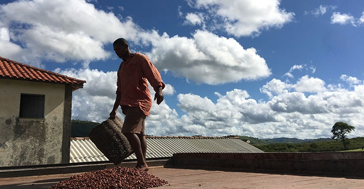 A Visit to Fazenda Sagarana, Bahia, Brasil