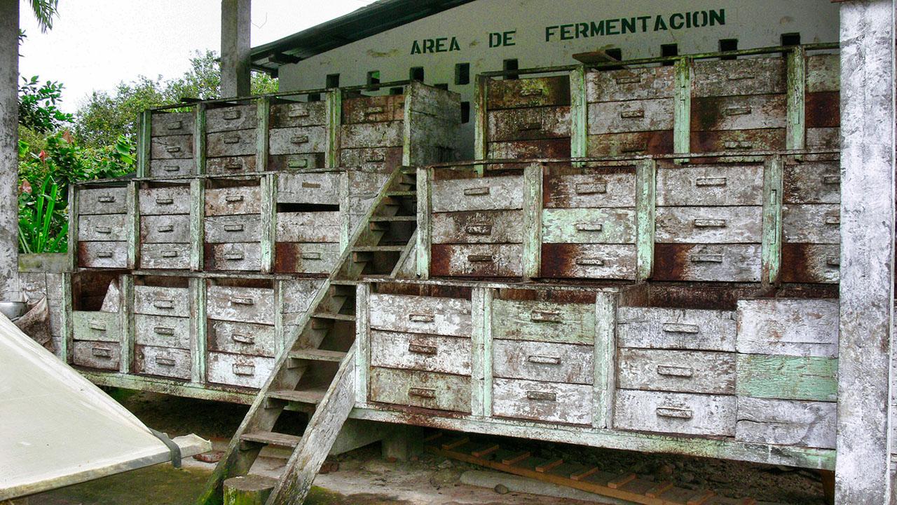 Fermentation cascade, near Naranjal, Ecuador