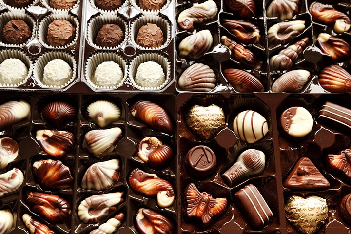 The environmental impact of chocolate production