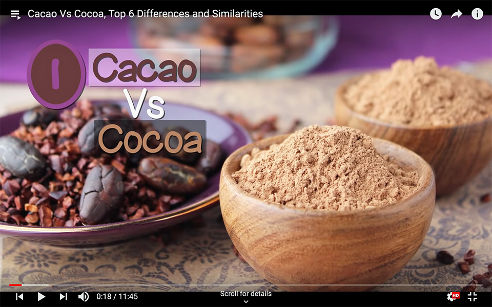 Cacao Vs Cocoa, Top 6 Differences and Similarities