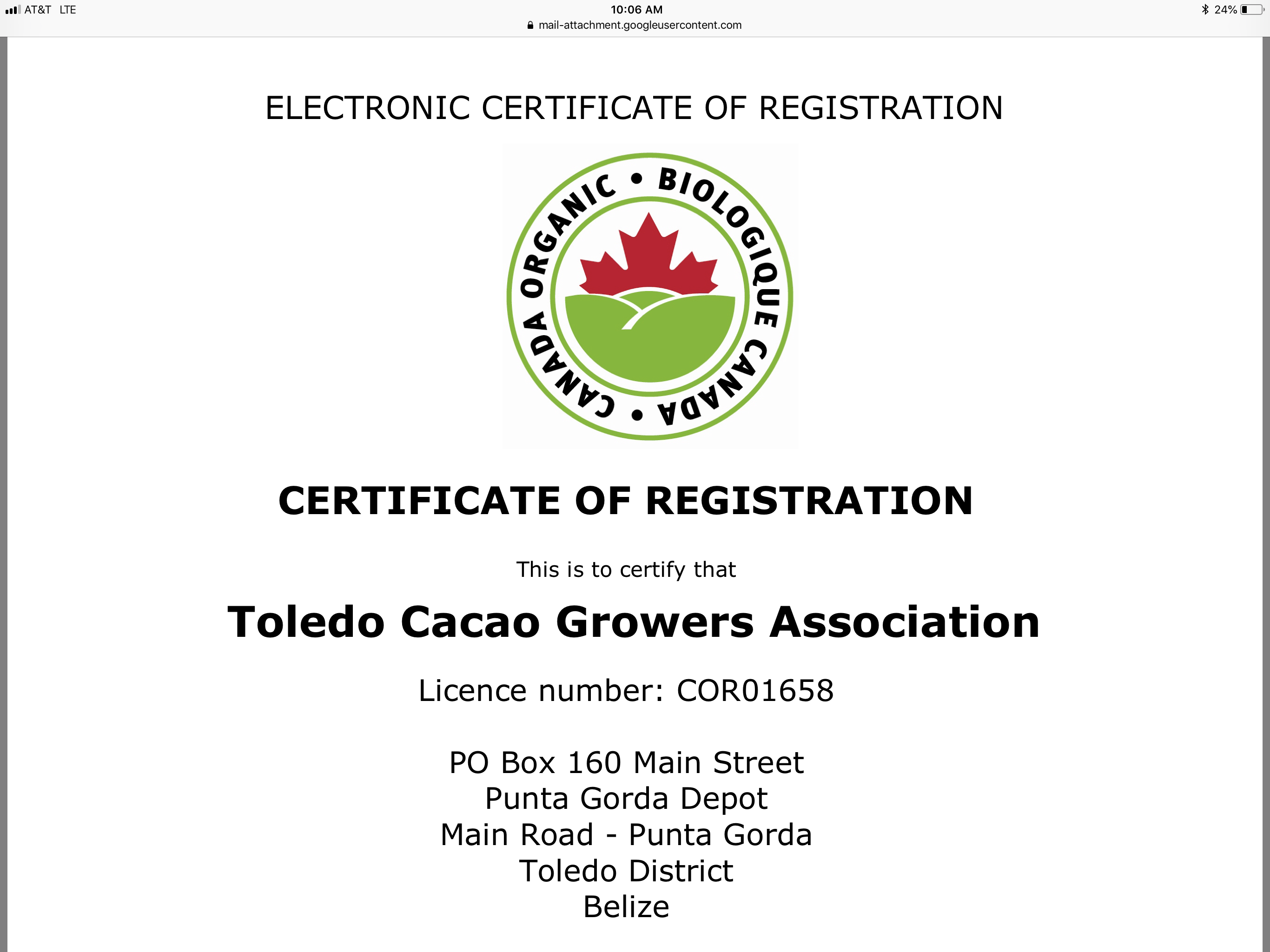 Fair Trade Certified/ORGANIC Belize Cacao Beans